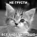Фотоальбом Екатерины Бурковой
