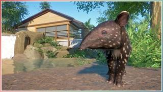 Malayan Tapir Habitat | South East Asia DLC | Planet Zoo Speed Build