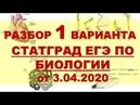 ЕГЭ БИОЛОГИЯ (1 Вариант Статград апрель 2020)