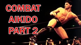 Jason Delucia Combat Aikido Part 2 (Attack and Counter Attack)