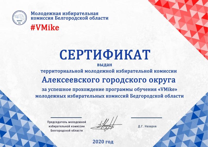 Итоги программы обучения молодежных избирательных комиссий Белгородской области «VMike», изображение №15