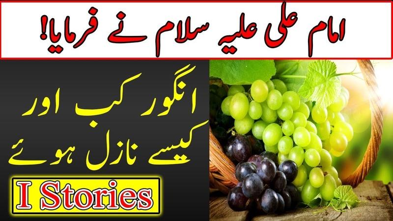 Hazrat Imam Mola Ali AS Says   Angoor Kab or kiyo Nazil huwe   angur   انگور   Grapes   I Stories