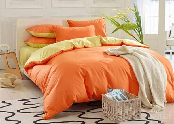 Как выбрать цвет постельного белья?, изображение №6
