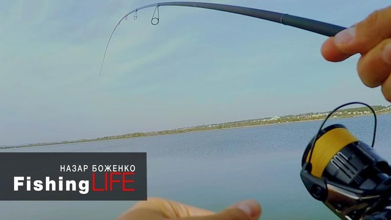 ЗАПУСТИЛИ в озеро 1500кг РИБИ рибалка на судака