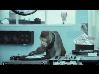 Basement Jaxx - Where`s Your Head At ( Official Video ) Rooty