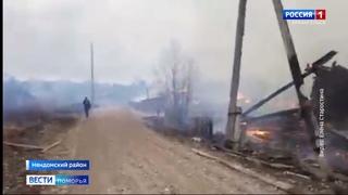 В Няндомском районе травяной пожар практически полностью уничтожил посёлок Новая