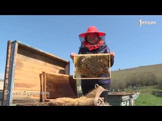 Поучительное интересное видео о пчеловодстве. Деревенское счастье в пчёлах