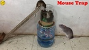Water Bottle Mouse Trap Best Idea Trap Easy Saving Rat Mouse Trap Homemade Mouse Reject