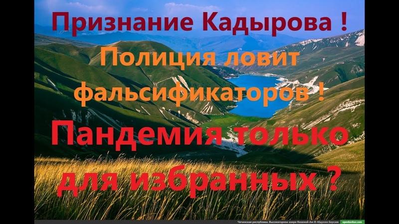 Кадыров ЕР Путину Результат мы вместе все ПОДДЕЛАЛИ ПОЛИЦИЯ ловит фальсификаторов на выборах