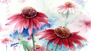Watercolor Painting - Cone Flowers- Tutorial Step by Step