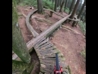 Geoff Gulevich ebike out on a skinny trail #1