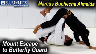 Mount Escape to Butterfly Guard by Marcus Buchecha Almeida
