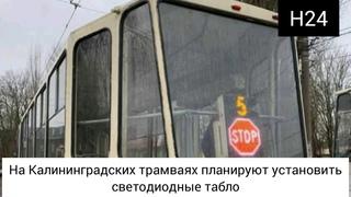В Калининградских трамваях планируют установить светодиодные табло