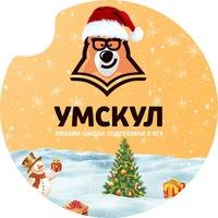 Логотип Подготовка к ЕГЭ и ОГЭ 2020 / УМСКУЛ