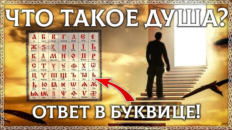 ЧТО ТАКОЕ ДУША расшифровка слова Буквица в помощь Этимология