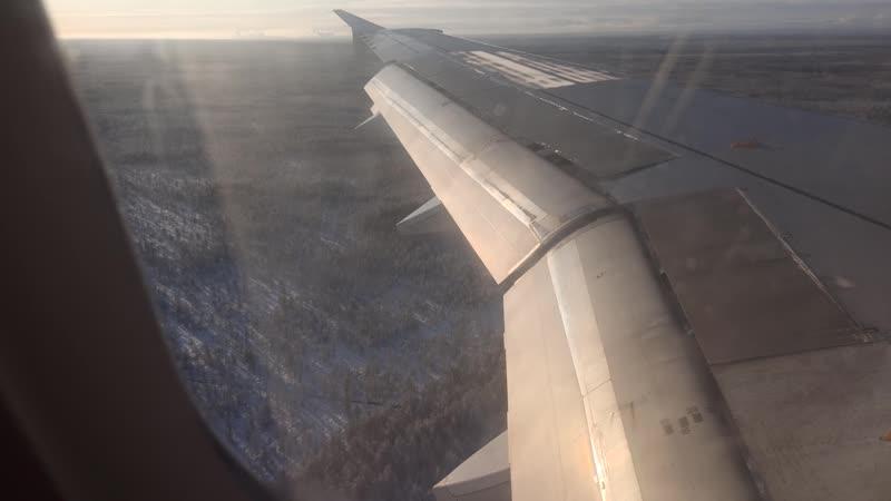 Ural Airlines Airbus A320 VQ BDM Жуковский Архангельск заход на посадку 4 21 октября 2020
