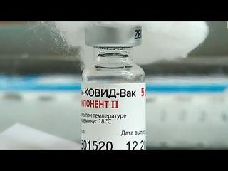 Массовая вакцинация от COVID-19 проходит в Бресте. Панорама