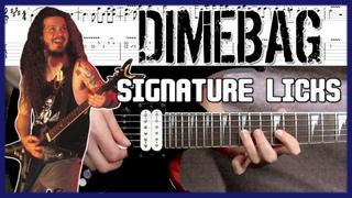 Dimebag Darrell Guitar Licks Signature Leads Tutorial & Tabs