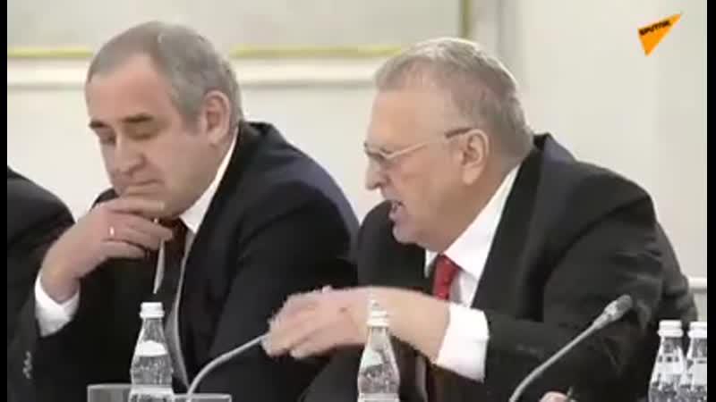 Жириновский рассказал Путину правду о протестантах
