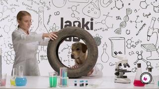 В лаборатории Lapki Lab знают толк в приятных запахах!