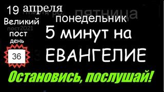 Евангелие дня 5 минут #мирправославия Великий пост 19 апреля понедельник день (36д) Библия