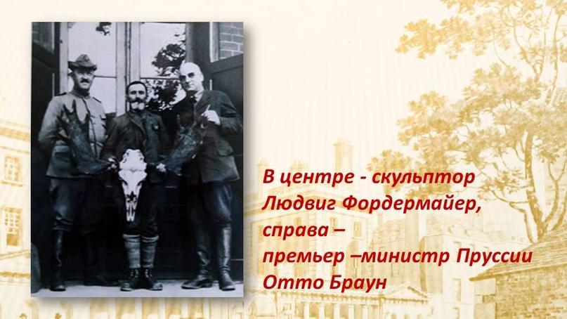 Лосиная история, изображение №10
