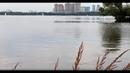 Виртуальная прогулка по Щукинскому полуострову