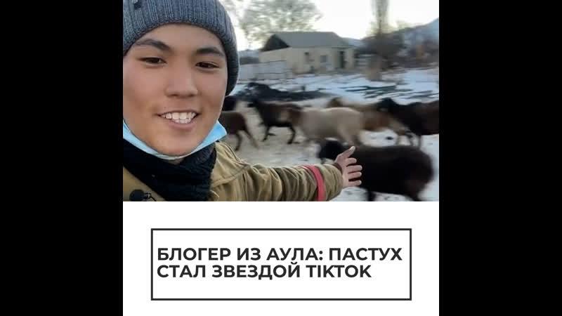 Пастух стал звездой TikTok
