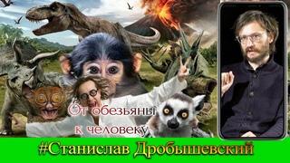 От обезьяны к человеку. Станислав Дробышевский. Понгиды и Гоминиды. Древний мир. Эволюция человека