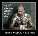 Фотоальбом человека Антона Тимофеева