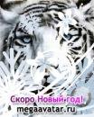 Персональный фотоальбом Натальи Суховой
