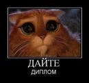 Фотоальбом Маргариты Моисеевой