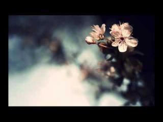 Miss Jane - It's A Fine Day (ATB Radio Edit)