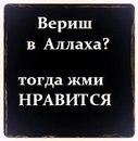Личный фотоальбом Азизы Масымхождаевой