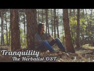 Dryante - Tranquility [Травница | The Herbalist OST](Sergey Eybog Cover)