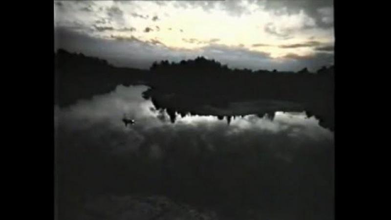Вода реки Забвения - Раймонд Моуди (Raymond Moody)
