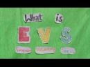 What is EVS European Voluntary Service ?