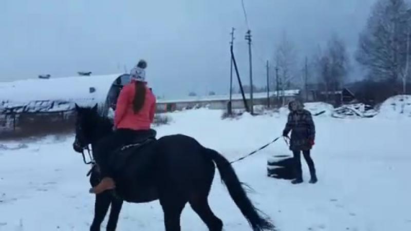 Катя Упражнения на улучшения координации и посадки строевая рысь без стремян