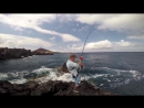 94 kg and 73 kg Yellowfin off the rocks!