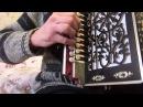 Филипович показывает аккорды переборы частушек на Гармони