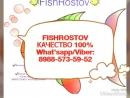 FishRostov Качество 100% Самая вкусная донская рыбка What'sapp viber 89885735952