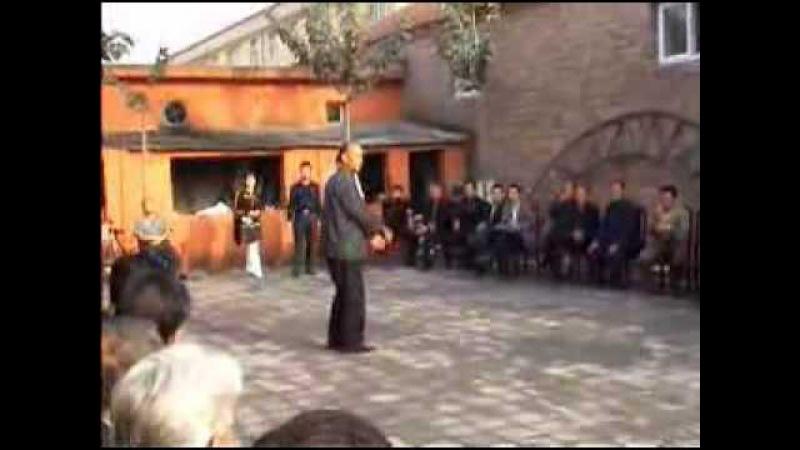Tong Bei Quan (Zhang Ce's lineage) [张策通背拳]