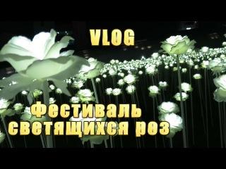 VLOG#11. Фестиваль светящихся роз на Тондэмуне