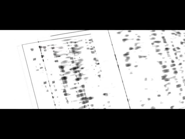 SAIKO - Monogatari Series · coub, коуб