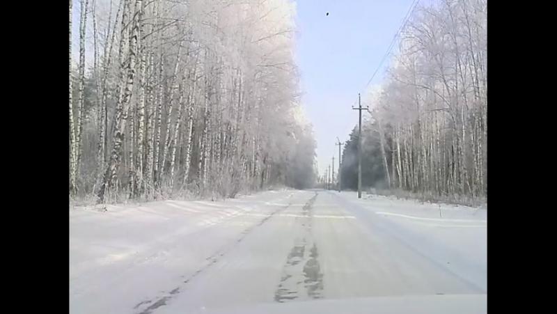 Снегири_2016_12_14_11_18_22
