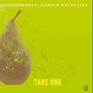 Обложка C'est Noy - Bonsai Garden Orchestra