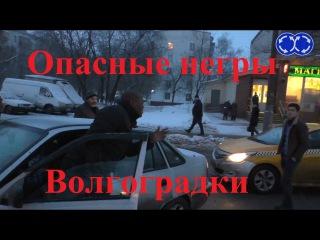 Вектор Движения №127. Опасные негры Волгоградки.