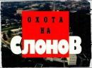 Криминальная Россия.Охота на слонов часть 1