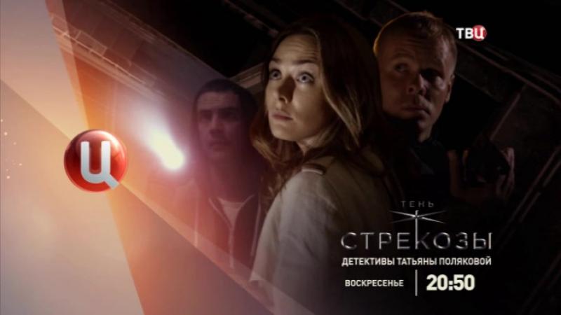 Тень стрекозы Детективы Татьяны Поляковой