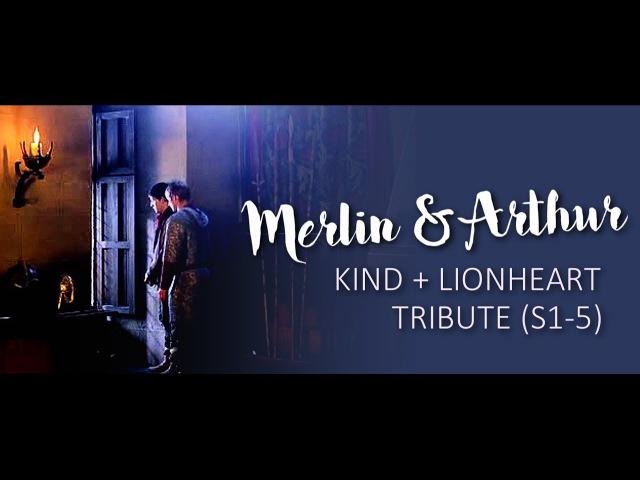 Merlin Arthur | King and Lionheart